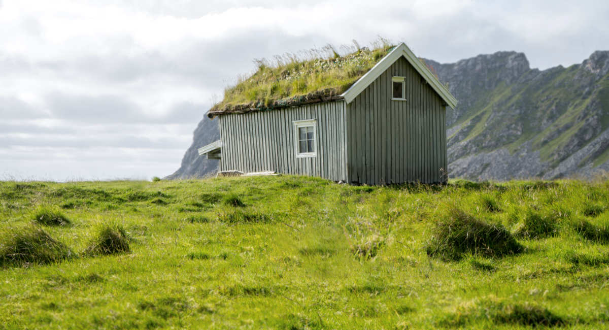 Sustainable House With Green Roof